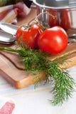 Dille en tomaten Stock Afbeeldingen