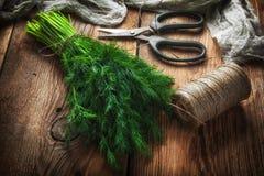 dilled świezi ogrodowi ziele obraz stock