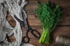 dilled świezi ogrodowi ziele fotografia stock