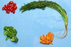 dilled Dziecko pomidory marchew brokuły na drewnianym niebieskiego nieba backgrou fotografia royalty free