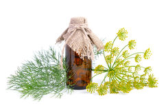 Dills essential oil in pharmaceutical bottle. Stock Photo