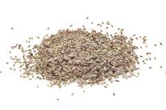 Dills Seed Stock Photo