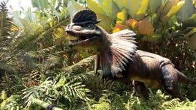 Dilofosauro Immagine Stock Libera da Diritti