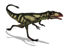 Dilong Dinosaur. The Dilong was a small dinosaur that lived in China during the Lower Cretaceous period - 3D render Stock Photos