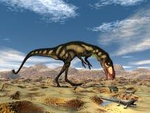 Dilong dinosaur - 3D render Royalty Free Stock Photo