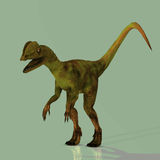 Dilophosaurus. Rendered Image of a Dinosaur - with Clipping Path Royalty Free Stock Photo