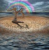 Diluvio del desierto