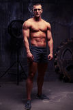 Dim light shot of serious young muscular athlete Stock Photography