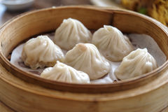Dim sum chinês - Xiaolongbao Imagens de Stock