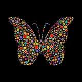 Dimensión de una variable de la mariposa Fotografía de archivo libre de regalías