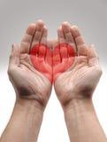 Dimensión de una variable del corazón en las manos masculinas Imagen de archivo