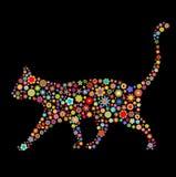 Dimensión de una variable del gato Foto de archivo