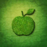 Dimensión de una variable de la manzana de la hierba Imagen de archivo libre de regalías