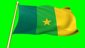 Flag of Cameroon, Africa