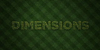 DIMENSIONS - fresh Grass letters with flowers and dandelions - 3D rendered royalty free stock image Royalty Free Stock Images