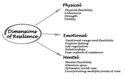 Dimensions of Resilience. Physical emotional, and mental Dimensions of Resilience Royalty Free Stock Photos