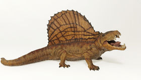 Dimetrodon,一只二叠纪掠食性爬行动物 库存照片