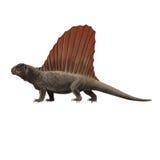 Dimetrodon Stock Image