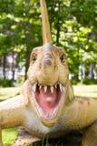 Dimetrodon grandis Royalty Free Stock Image