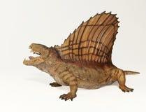 A Dimetrodon, a Permian Predatory Reptile. A Dimetrodon, a Predatory Mammal-like Reptile from the Permian Royalty Free Stock Photos