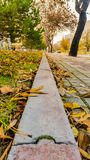 Diminishing perspective view of a pavement in a park Stock Photos