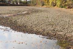 Diminishing water and drought in the pond. Droughts as a result of global warming royalty free stock image