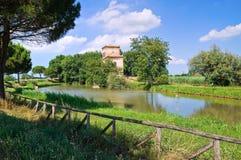 Diminua a torre. Mesola. Emilia-Romagna. Itália. imagens de stock royalty free