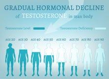 Diminuição gradual da hormona ilustração stock