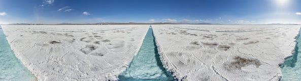 Diminuisca sulle saline Grandes in Jujuy, Argentina Immagini Stock Libere da Diritti