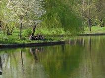 Dimitrie Brandza Botanical Garden in Bucharest, Romania. Royalty Free Stock Photo