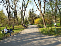 Dimitrie Brandza Botanical Garden in Bucharest, Romania. Stock Photo
