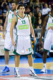 Dimitris Diamantidis of Panathinaikos Royalty Free Stock Photos