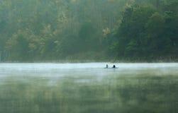 dimmaängmorgon över vatten Royaltyfri Fotografi