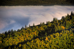 Dimma över en dal 3 Arkivbilder