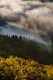 Dimma över en dal 3 Royaltyfria Foton