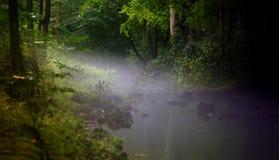 Dimma över floden Royaltyfri Fotografi