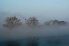 dimma över floden Royaltyfria Bilder