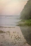 dimma över floden ovanför den härliga naturen för morgonen för guld för fågeloklarhetsfärger tidiga klipska stiger den angenäma t royaltyfria foton