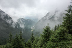 Dimma över huvudvägen till berg transfagarasan väg romania Arkivfoton