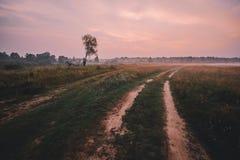 Dimma över landsvägen och ensamt träd utan sidor med solnedgången på bakgrund royaltyfri foto
