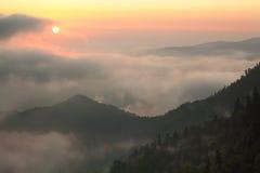 Dimma över skogen i bergen Royaltyfri Bild