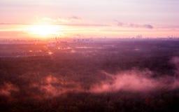 Dimma över skogen på solnedgången arkivbilder