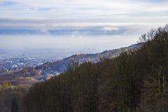 Dimma över staden och skogen royaltyfri fotografi
