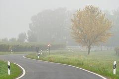 dimma över vägen Arkivbild