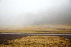 dimma Fotografering för Bildbyråer