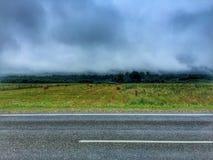Dimma efter regnar Arkivbild