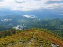 Dimma i bergen Arkivfoto