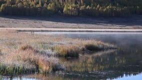 Dimma i ottan på berg en sjö lager videofilmer