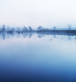 Dimma i vattnet arkivfoton