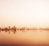 Dimma i vattnet royaltyfria bilder